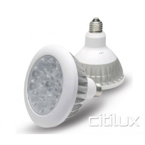 Dodeca PAR38 14.4W  LED Bulbs